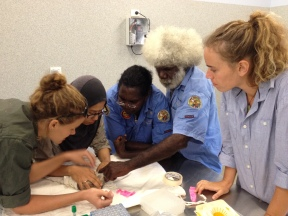 Jordi & Jaime's norther quoll work on Groote Eyland is conducted in close corporation with the local ranges
